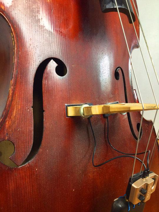 Kolofonium auf Kontrabass entfernen polieren